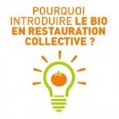 Favoriser le bio en restauration collective