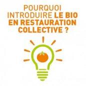 Favoriser le bio en restauration collective