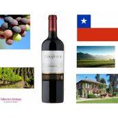 Le vin chilien: le nouveau monde viti-vinicole